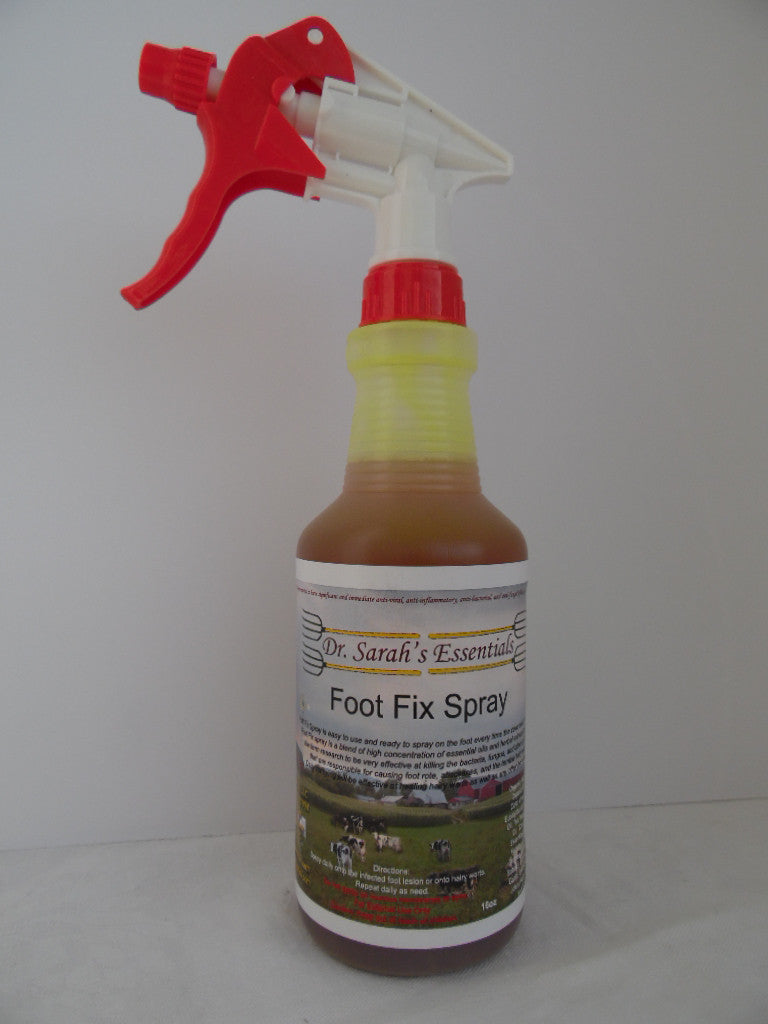 Dr. Sarah's Essentials - Foot Fix Spray