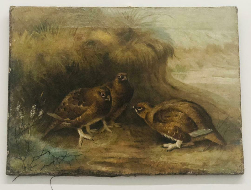 "Archibald Thorburn, ""Perdices"", Signed Realist Oil on Canvas, Circa 1900-1930 - $200K Apr Value*"