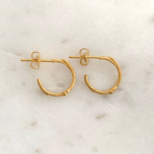 Load image into Gallery viewer, Willow Twig Small Hoop Earrings