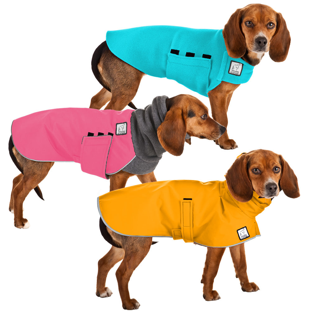 Voyagers K9 Apparel Beagle All Weather Combo