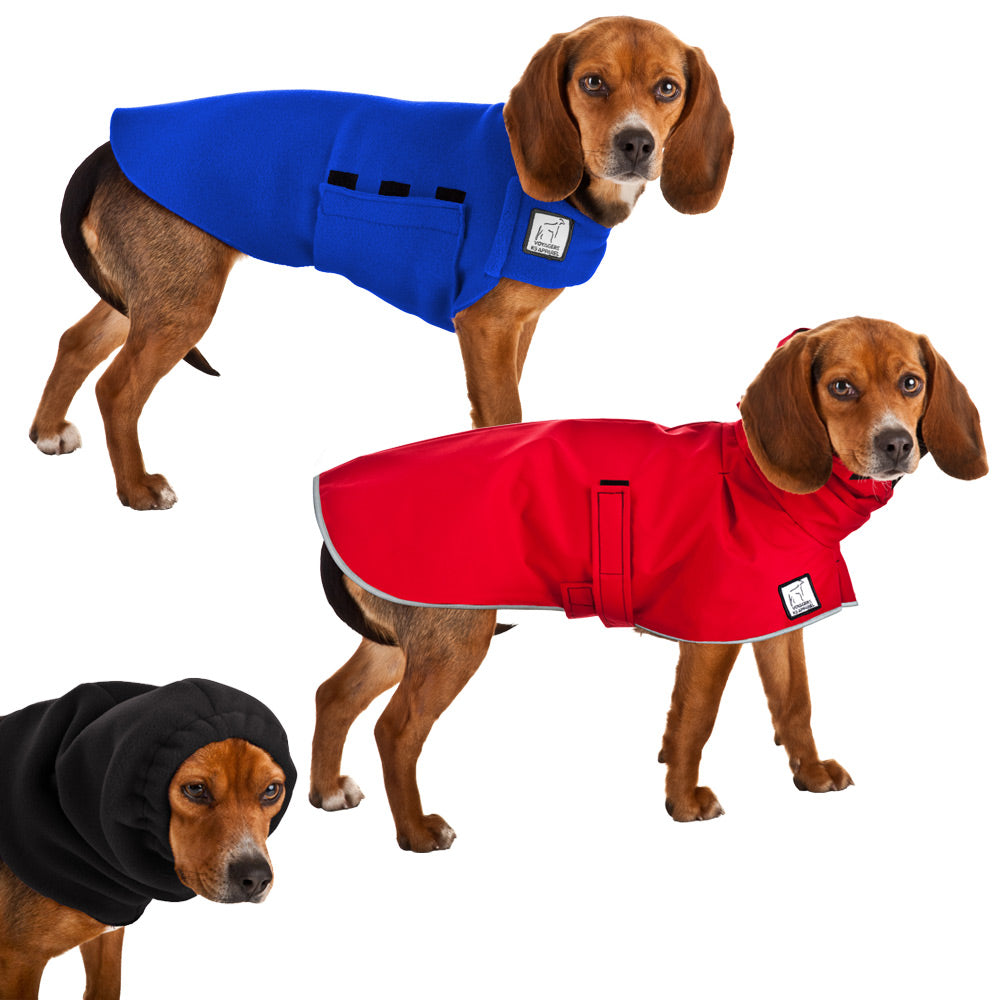 Voyagers K9 Apparel Beagle Warm Climate Combo