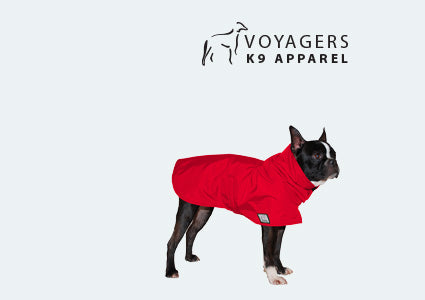 Boston Terrier Dog Rain Coat