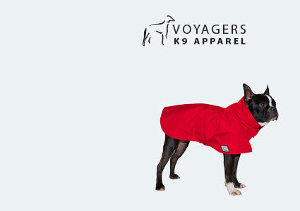 Boston Terrier Rain Coat