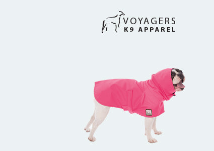 French Bulldog Dog Rain Coat