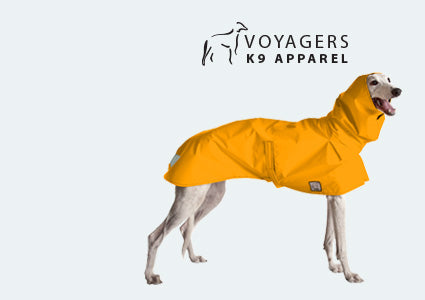 Greyhound Dog Rain Coat