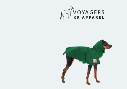 Miniature Pinscher Dog Rain Coat
