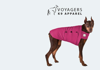 Doberman Pinscher Dog Tummy Warmer