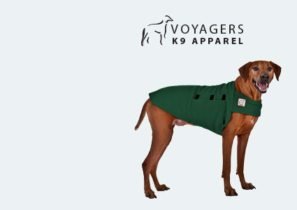 Rhodesian Ridgeback Dog Tummy Warmer
