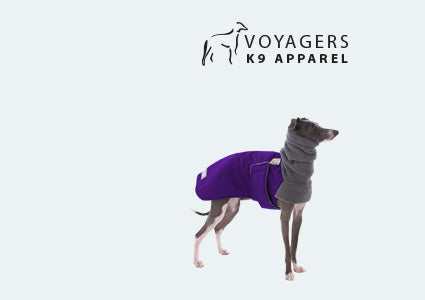 Italian Greyhound Dog Winter Coat