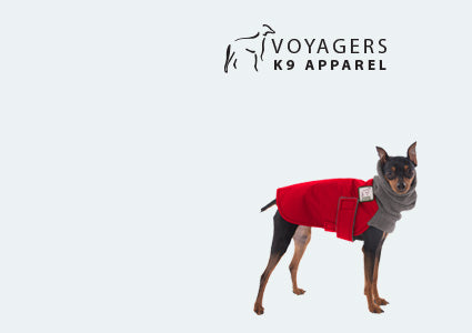 Miniature Pinscher Dog Winter Coat