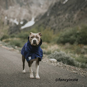 Voyagers K9 Apparel Mountain Gear for Boxer