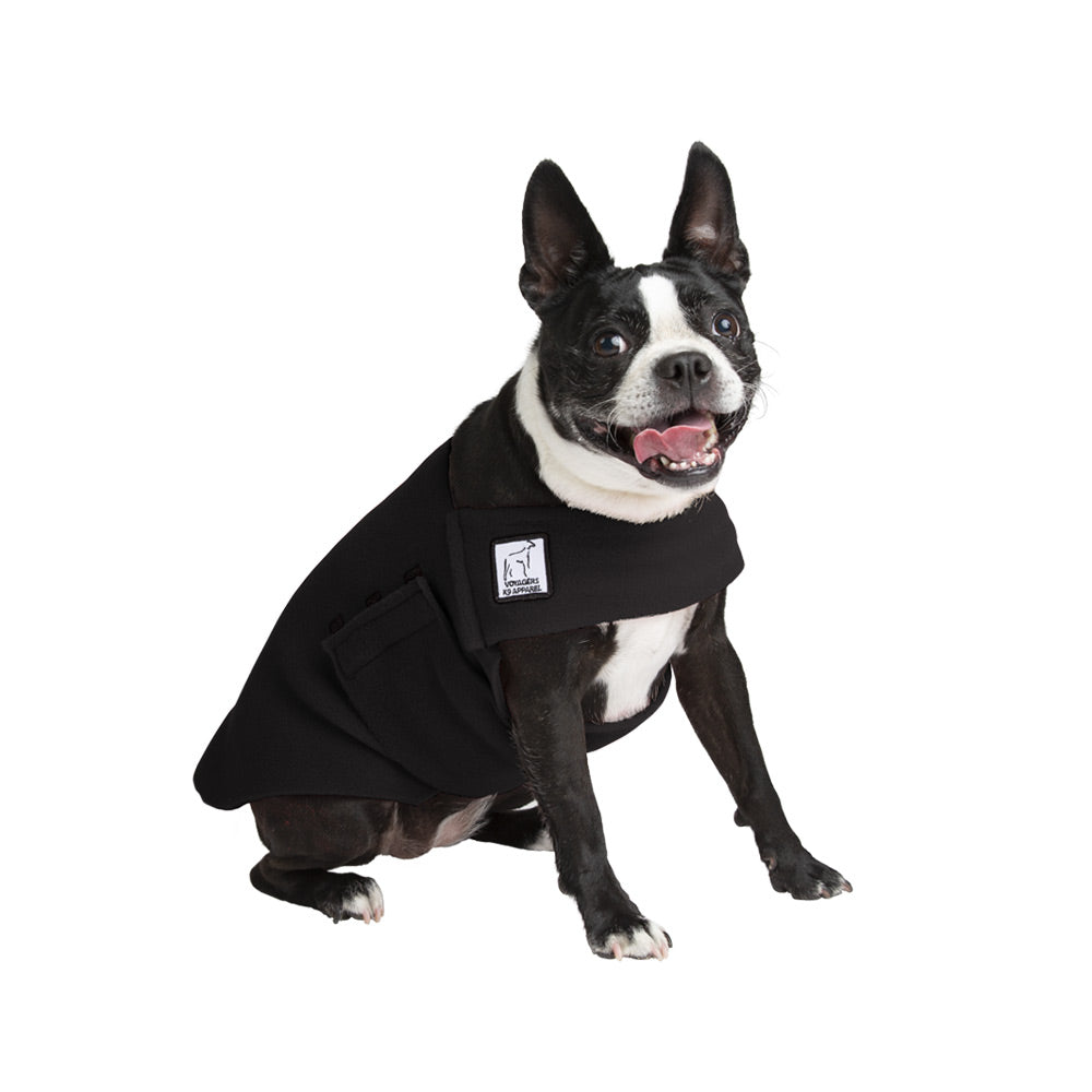 Voyagers K9 Apparel Boston Terrier Tummy Warmer