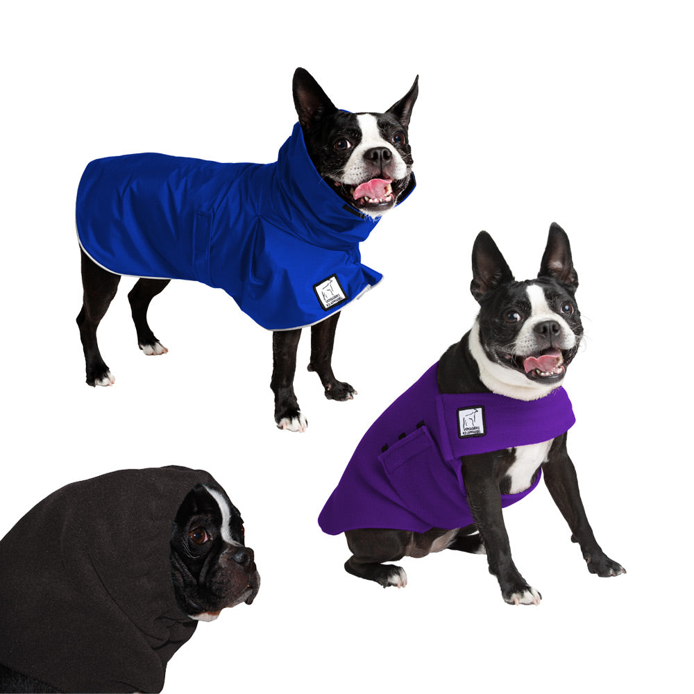 Voyagers K9 Apparel Boston Terrier Warm Climate Combo