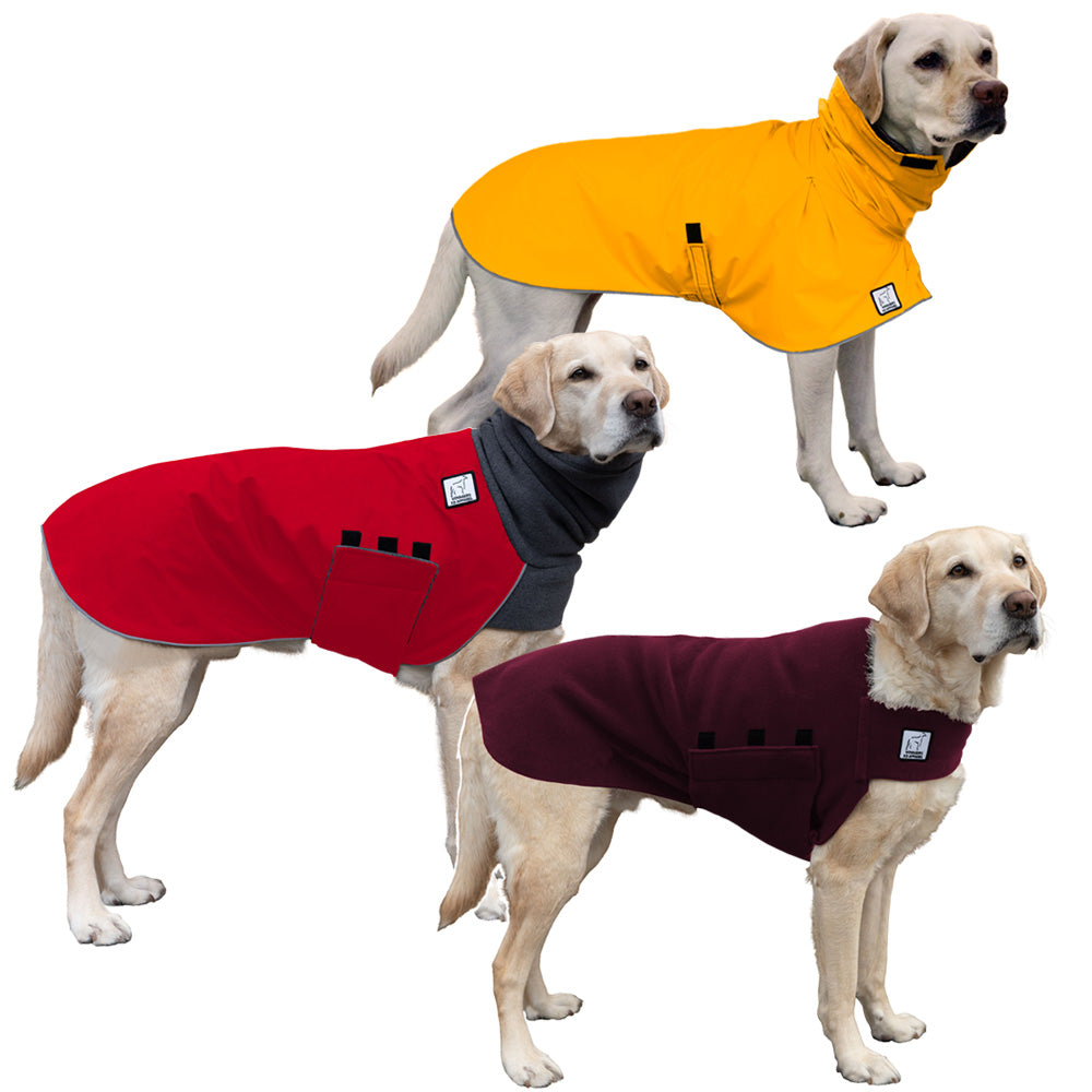 Voyagers K9 Apparel Labrador Retriever All Weather Combo
