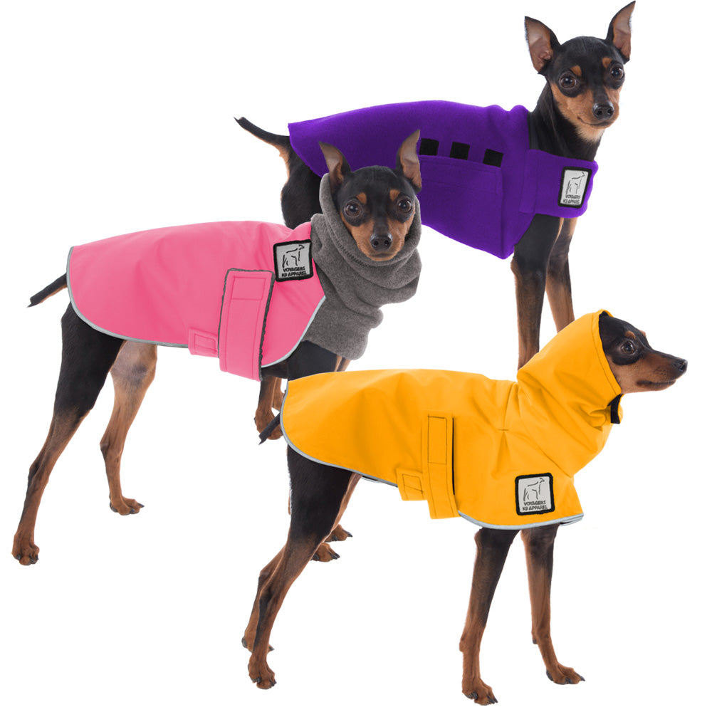 Voyagers K9 Apparel Miniature Pinscher All Weather Combo
