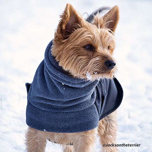 Voyagers K9 Apparel Custom Terrier Winter Coat