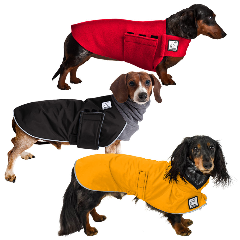 Voyagers K9 Apparel Dachshund All Weather Combo