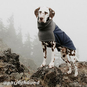Voyagers K9 Apparel Dalmatian Winter Coat