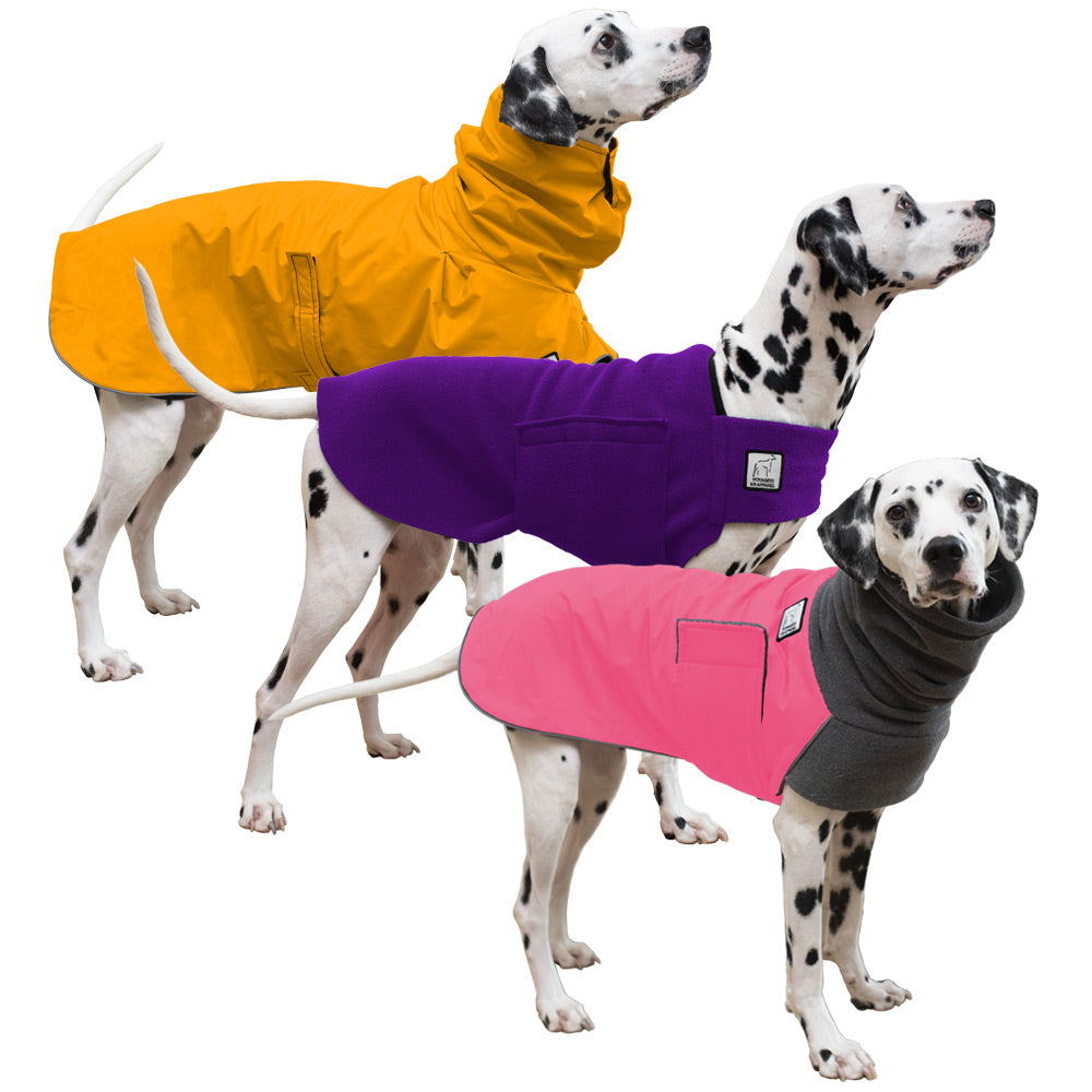 Voyagers K9 Apparel Dalmatian All Weather Combo