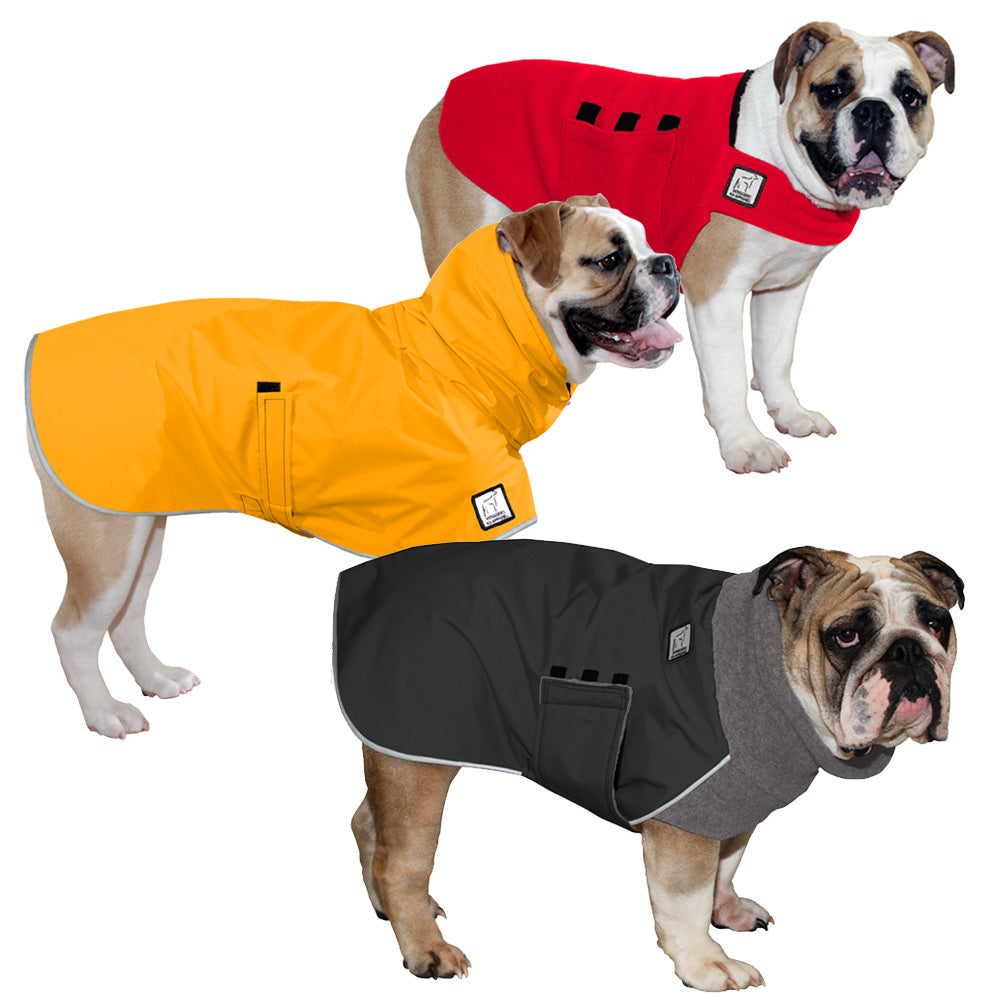 Voyagers K9 Apparel English Bulldog All Weather Combo