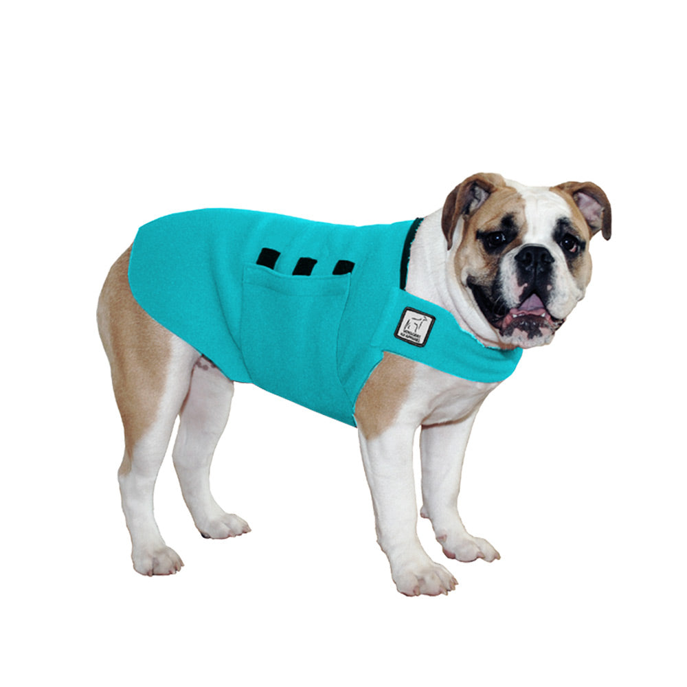 Voyagers K9 Apparel English Bulldog Tummy Warmer