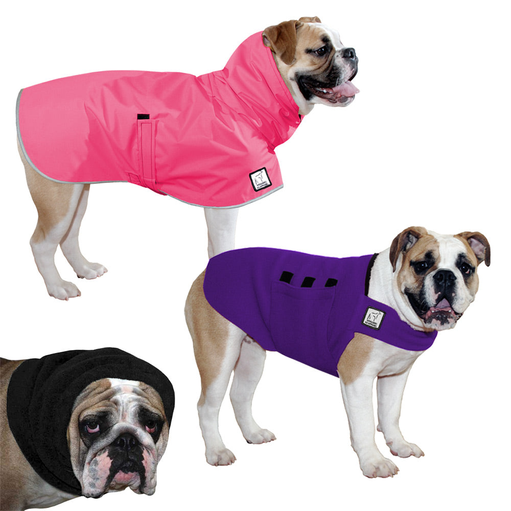 Voyagers K9 Apparel English Bulldog Warm Climate Combo