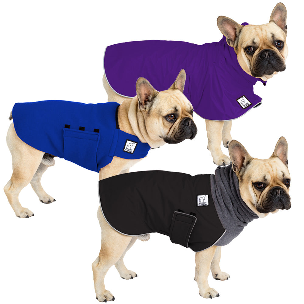 Voyagers K9 Apparel French Bulldog All Weather Combo