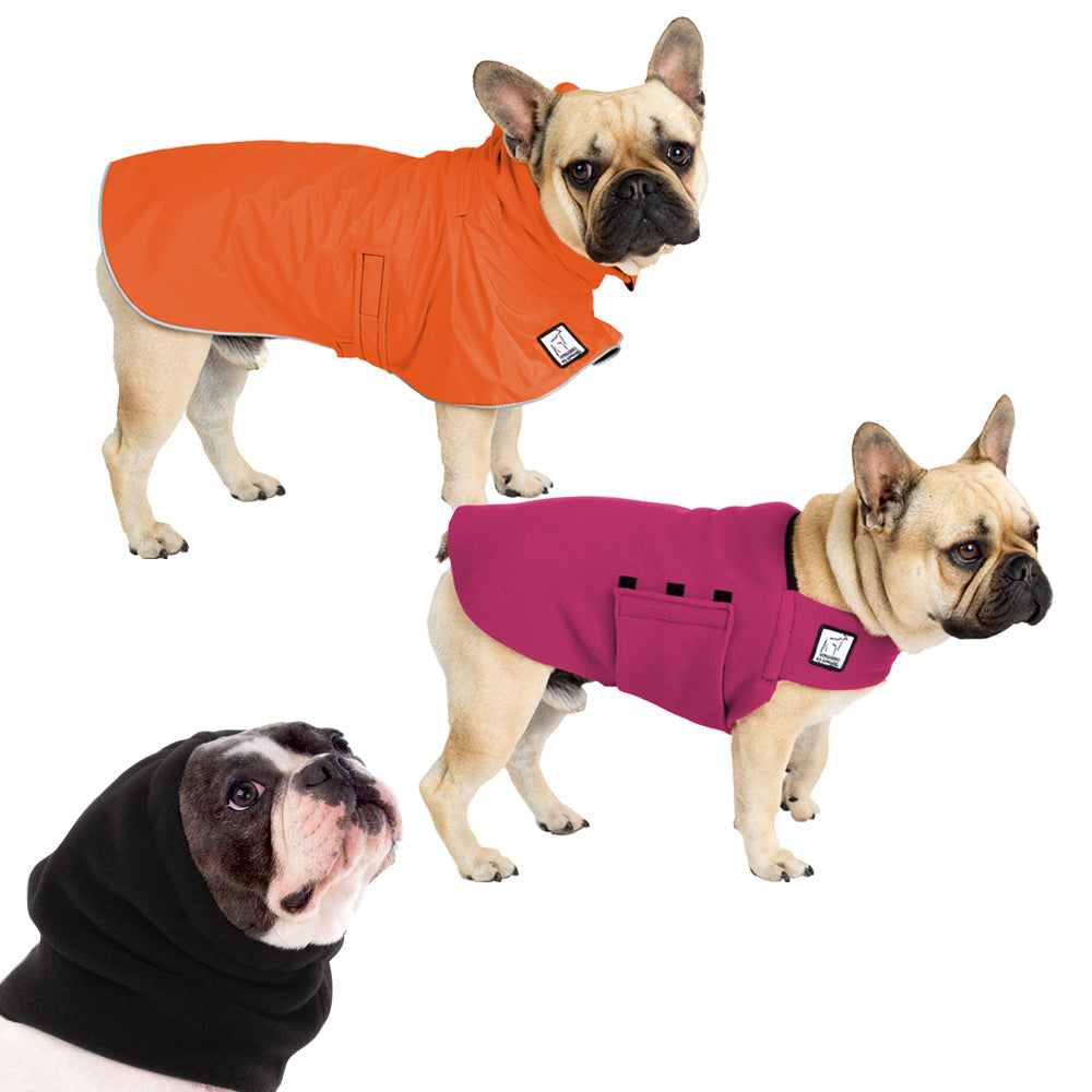 Voyagers K9 Apparel French Bulldog Warm Climate Combo
