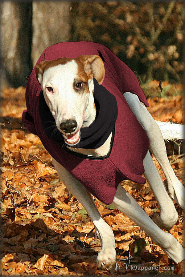Voyagers K9 Apparel Greyhound Dog Hood and Spring Fall Coat