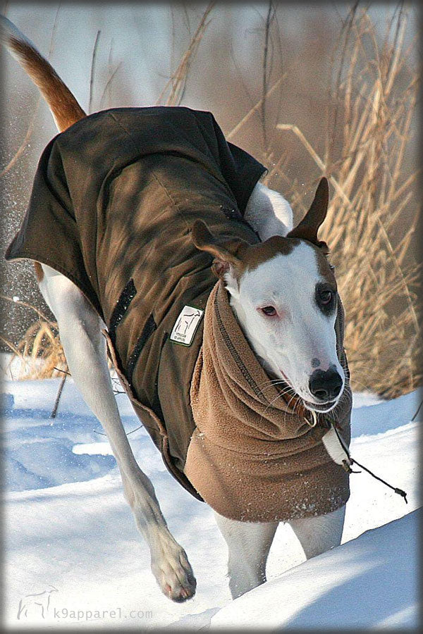 Voyagers K9 Apparel Greyhound Dog Winter Coat