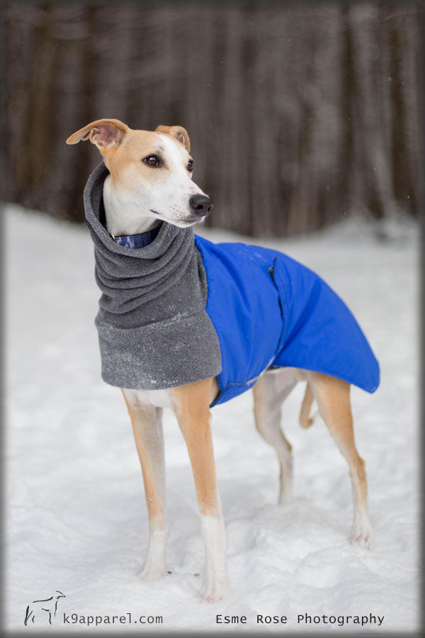 Voyagers K9 Apparel Whippet Dog Winter Coat