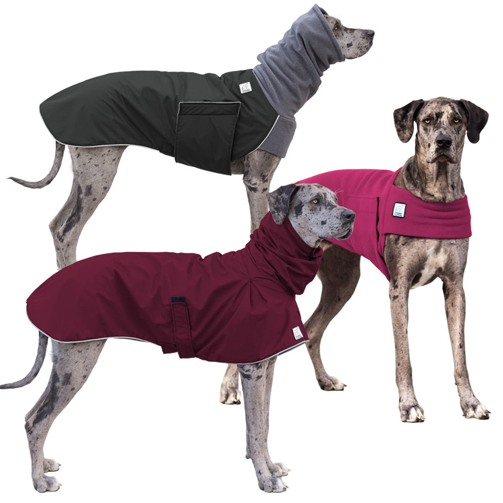 Voyagers K9 Apparel Great Dane All Weather Combo