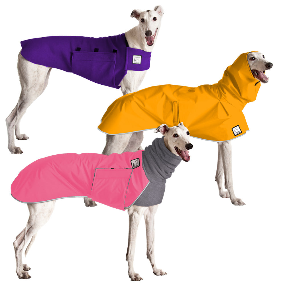 Voyagers K9 Apparel Greyhound All Weather Combo