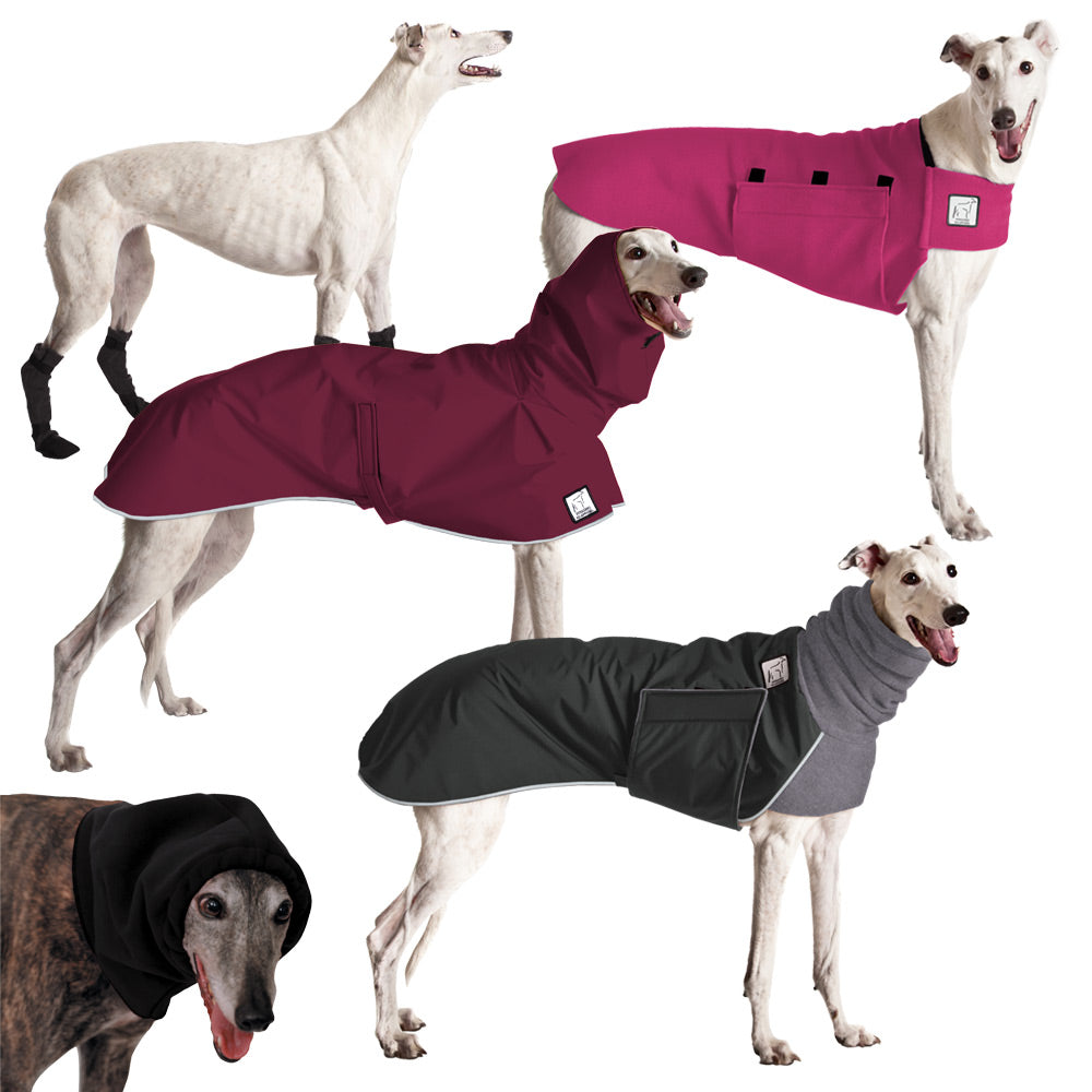 Voyagers K9 Apparel Greyhound Complete Apparel Line