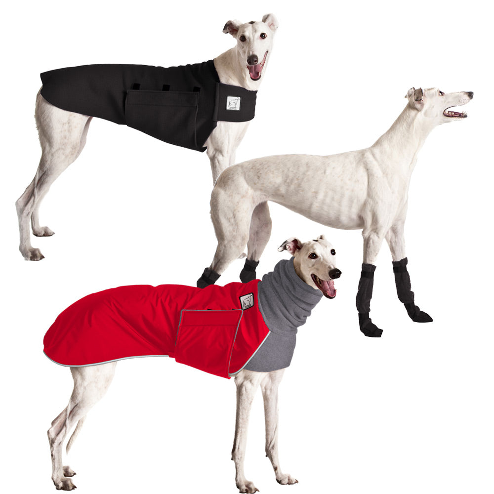 Voyagers K9 Apparel Greyhound Cold Climate Combo