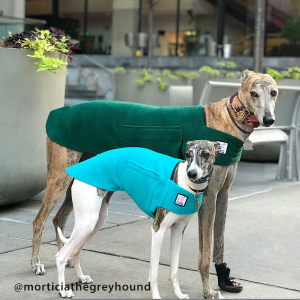 Voyagers K9 Apparel Greyhound and Whippet Tummy Warmers