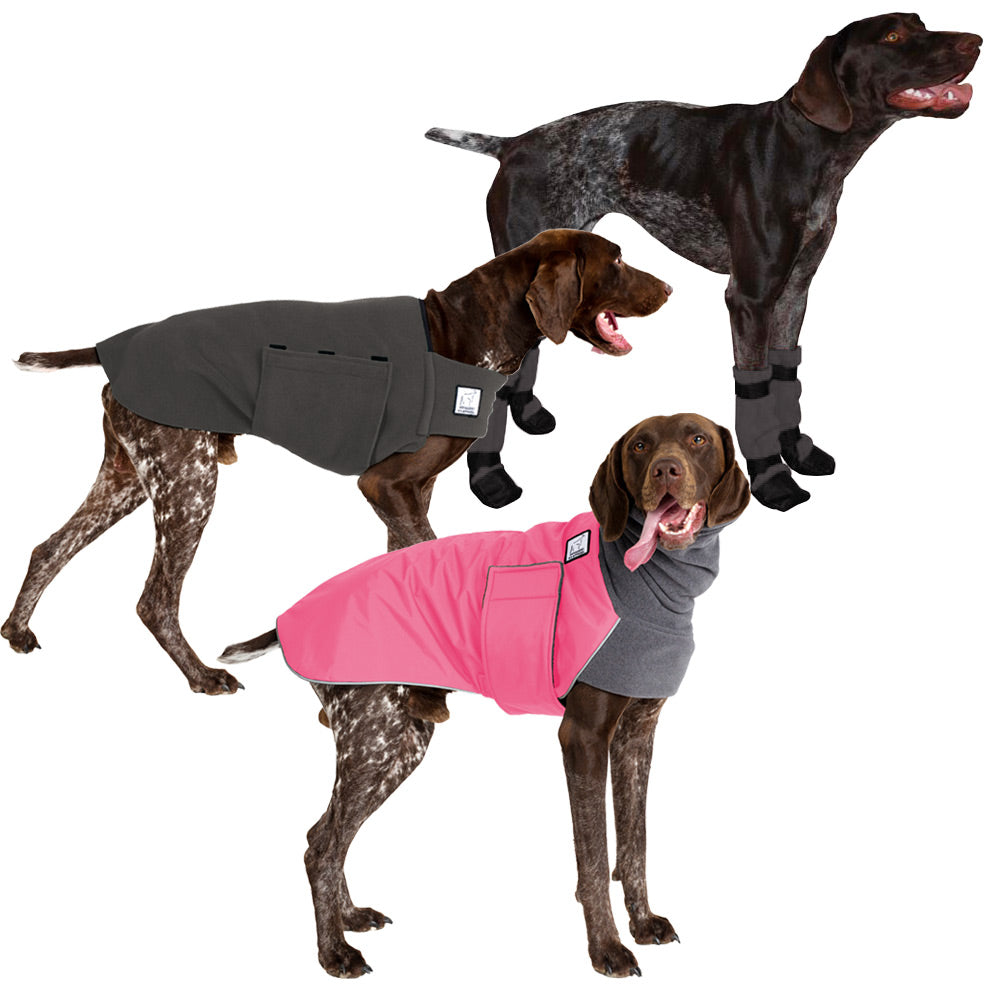 Voyagers K9 Apparel German Shorthaired Pointer Cold Climate Combo