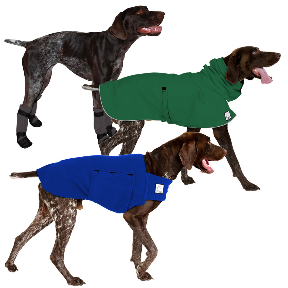 Voyagers K9 Apparel German Shorthaired Pointer Moderate Climate Combo