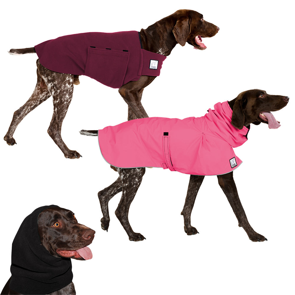 Voyagers K9 Apparel German Shorthaired Pointer Warm Climate Combo