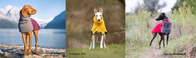 Voygers K9 Apparel Dog Friends