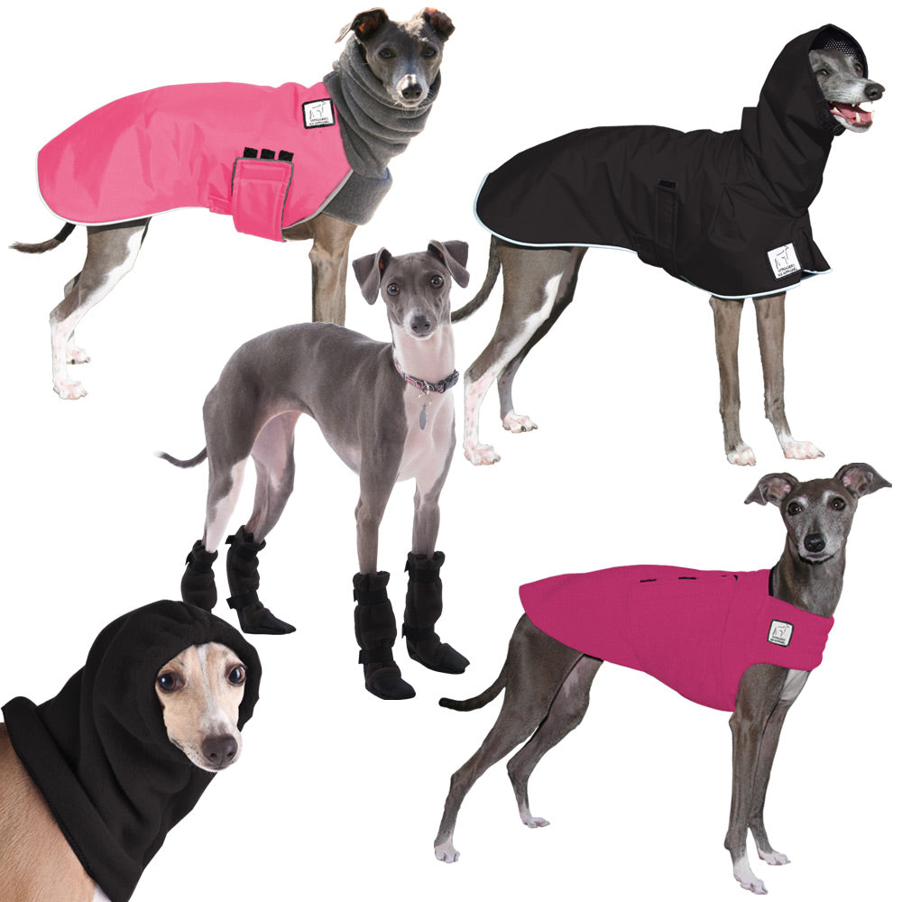 Voyagers K9 Apparel Italian Greyhound Complete Apparel Line