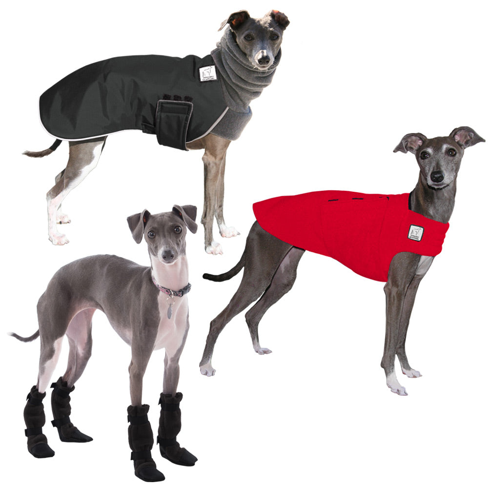 Voyagers K9 Apparel Italian Greyhound Cold Climate Combo