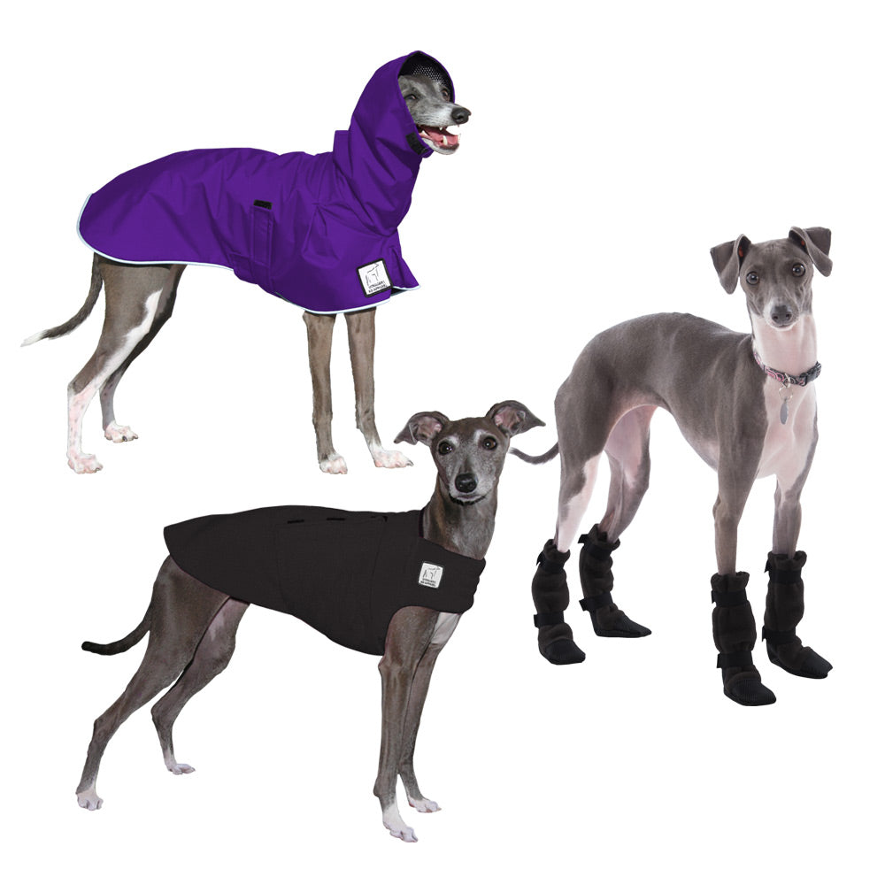 Voyagers K9 Apparel Italian Greyhound Moderate Climate Combo