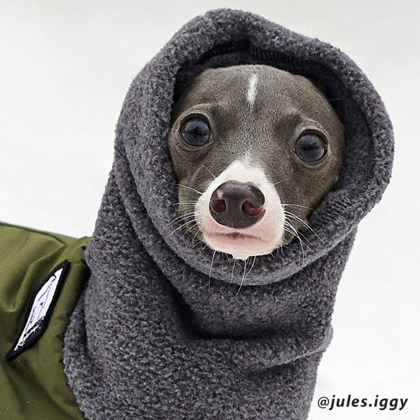 Voyagers K9 Apparel Italian Greyhound Winter Coat