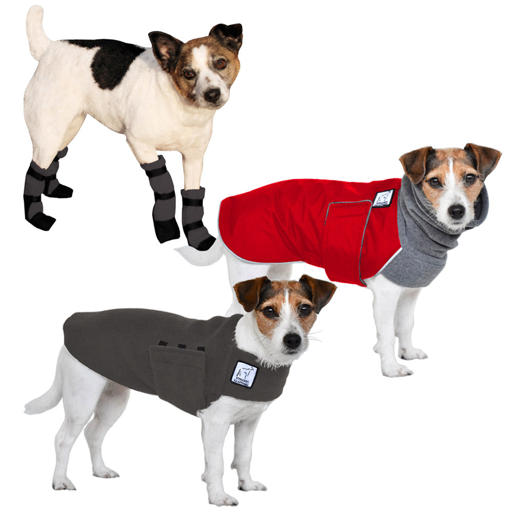 Voyagers K9 Apparel Jack Russell Terrier Cold Climate Combo