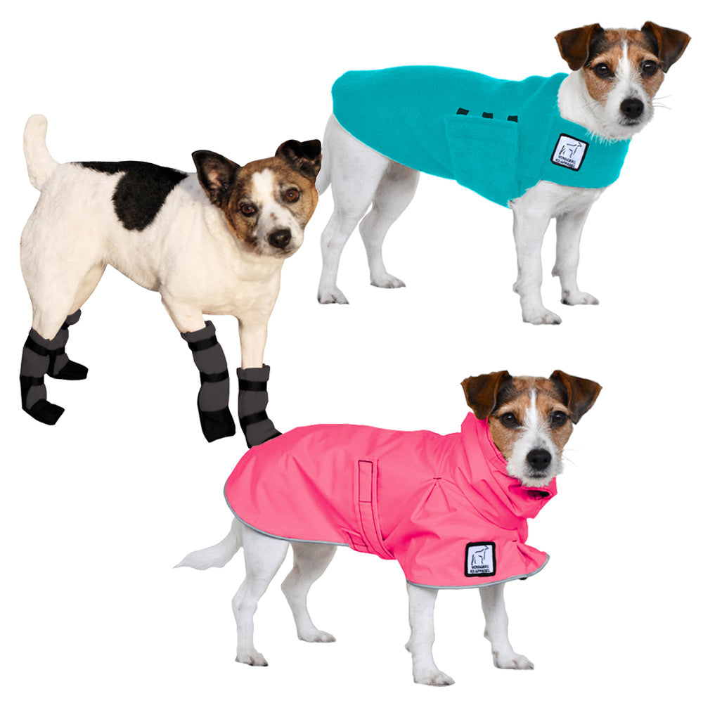 Voyagers K9 Apparel Jack Russell Terrier Moderate Climate Combo