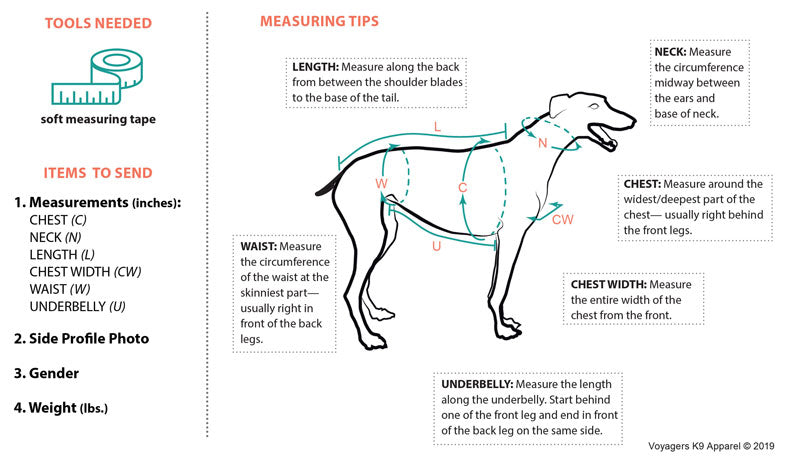 Measuring Tips for ordering a custom-fit dog coat