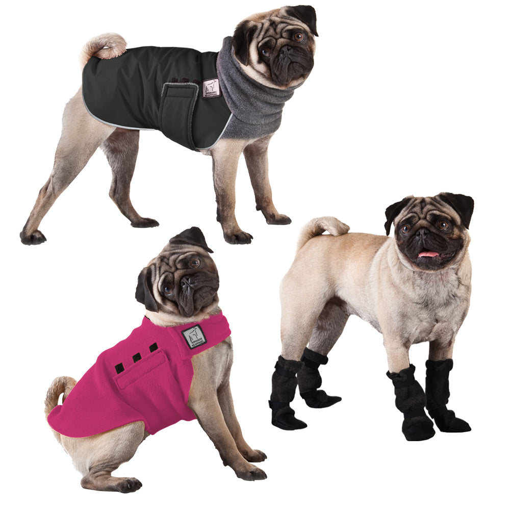 Voyagers K9 Apparel Pug Cold Climate Combo