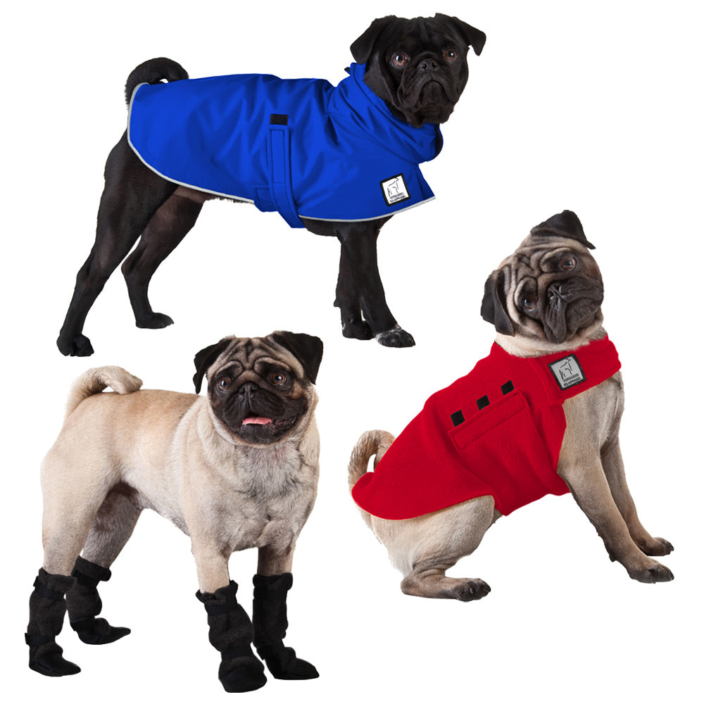 Voyagers K9 Apparel Pug Moderate Climate Combo