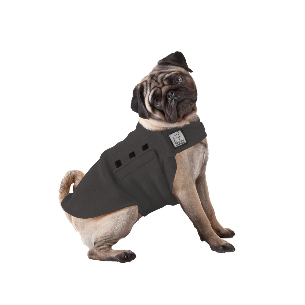Voyagers K9 Apparel Pug Tummy Warmer